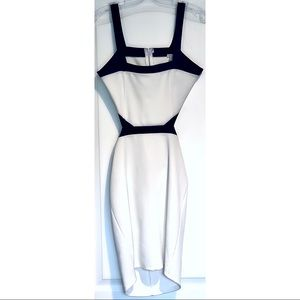 NWOT - Cut Out Side Bodycon Navy White Dress